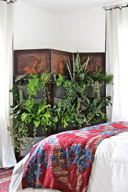 salem beds plants as decor
