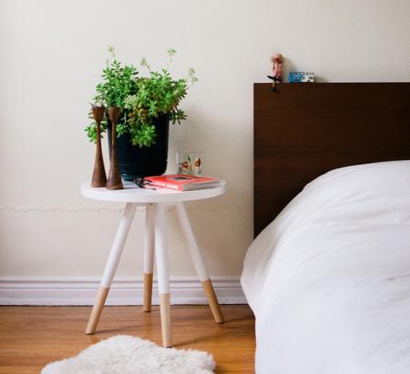 succulents in the bedroom