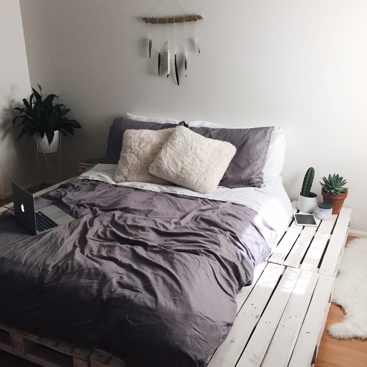 Succulents In The Bedroom: Turning Your Bedroom Into A